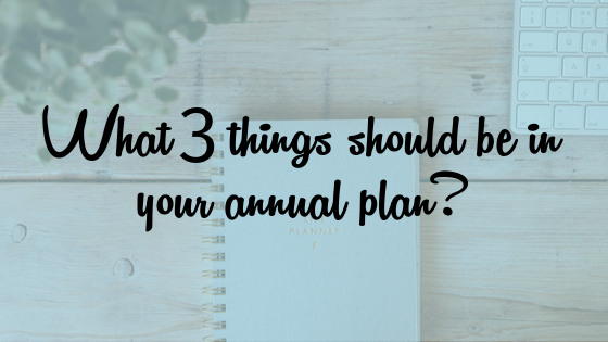What 3 things should be in your annual plan?